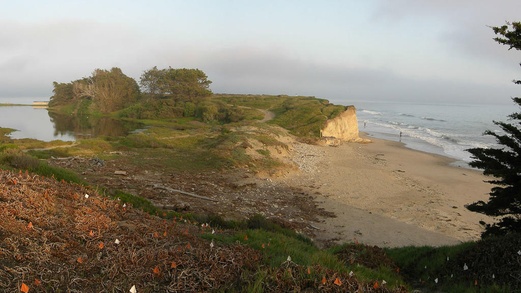 UCSB_080404_P1